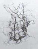 Drum oak 1
