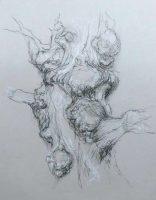 Drum oak 5