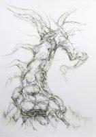 Calder bank oak 1