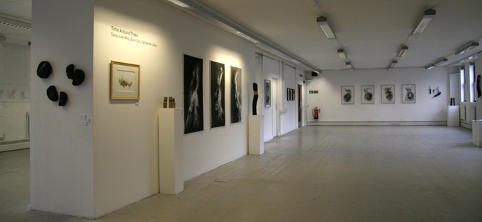 gallery-view-1