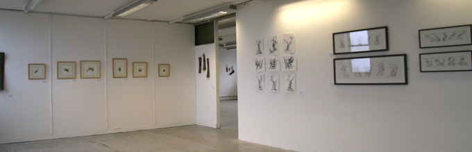 gallery-view-7
