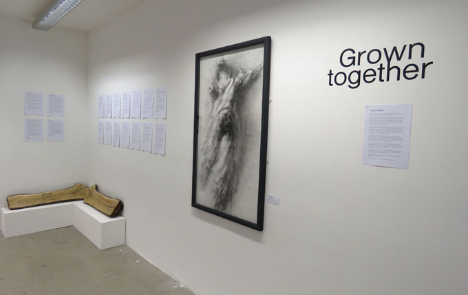 Growntogether_installation18
