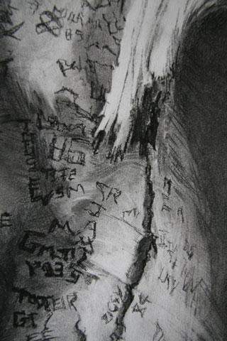 newbattle-graffiti-beech-de