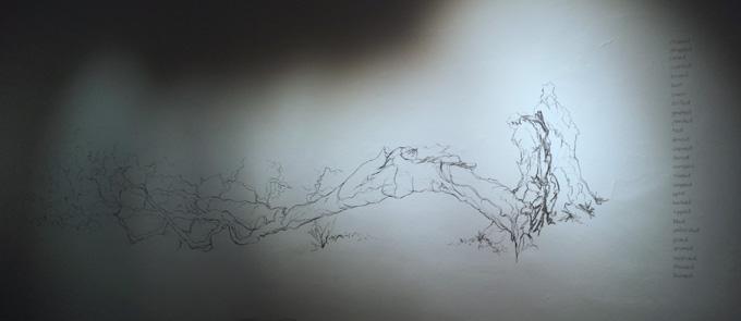 time-around-trees-12