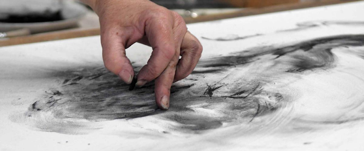 Tansy drawing with charcoal