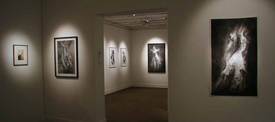 Tansy Lee Moir exhibition installation view