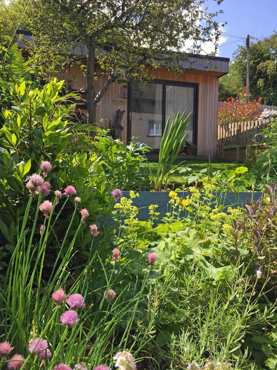 garden studio in summer